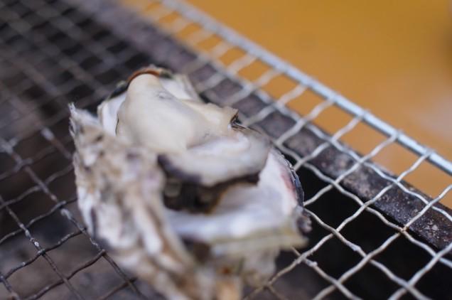 プリンとした牡蠣!