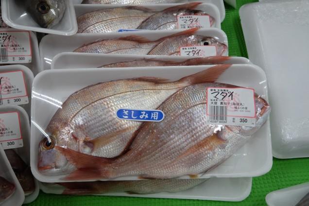 真鯛も350円!