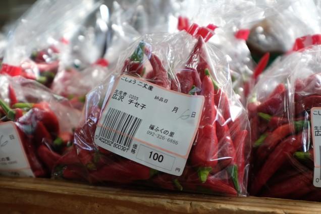 唐辛子100円!
