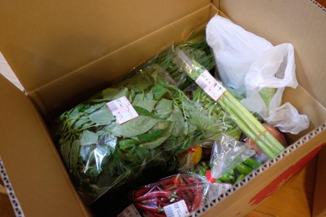 うちは野菜中心の食事だから、非常に嬉しい!