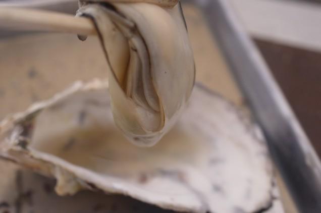 牡蠣好きにはたまらない!