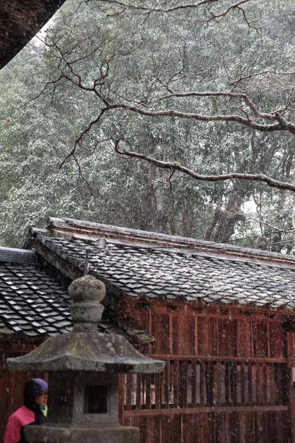 猛烈な風で吹雪…