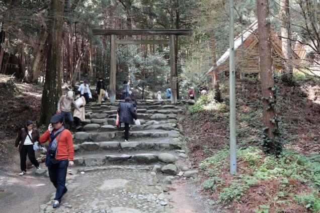 階段を上って先に行くと、櫻井大神宮があります!