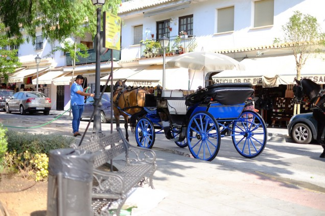 馬タクシー、ロバタクシーあり