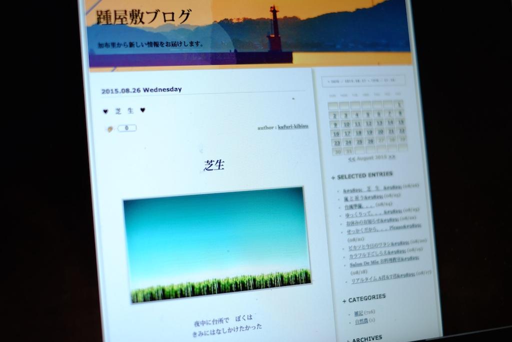 これは読むべき糸島のショップオーナーブログ3選!
