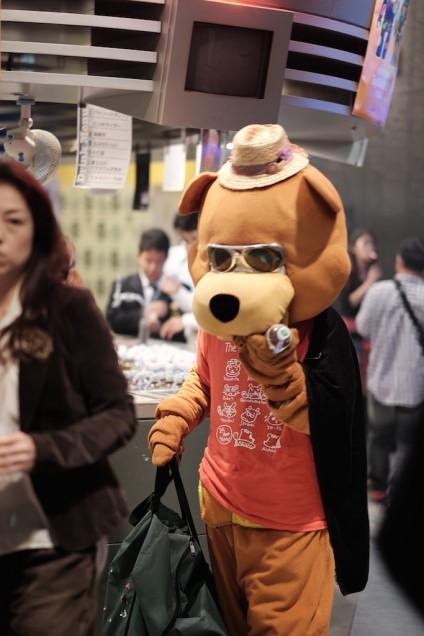 今回も糸島のクマを発見!