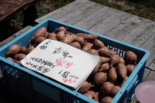 山北農園の蜜芋も売ってたり