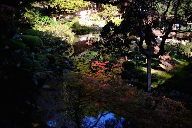 ちょっと上から眺めると、池に映った紅葉が見事に…