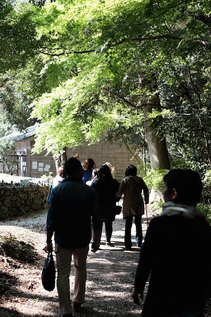 林の中を歩く…この辺りも雰囲気が良い