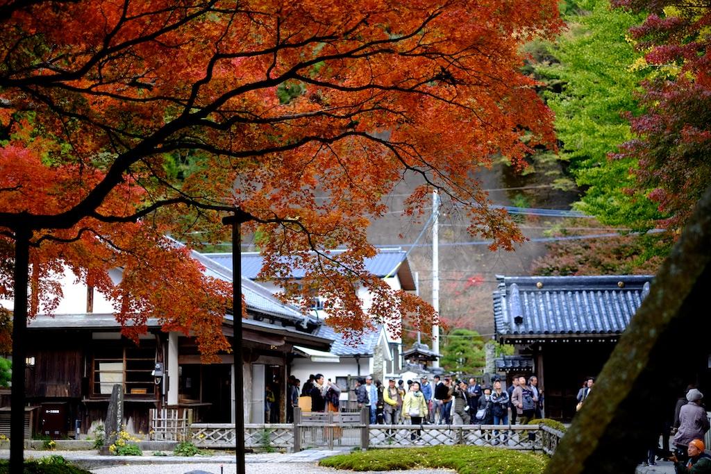 雷山千如寺大悲王院 – 2017年の大楓も素晴らしかった!